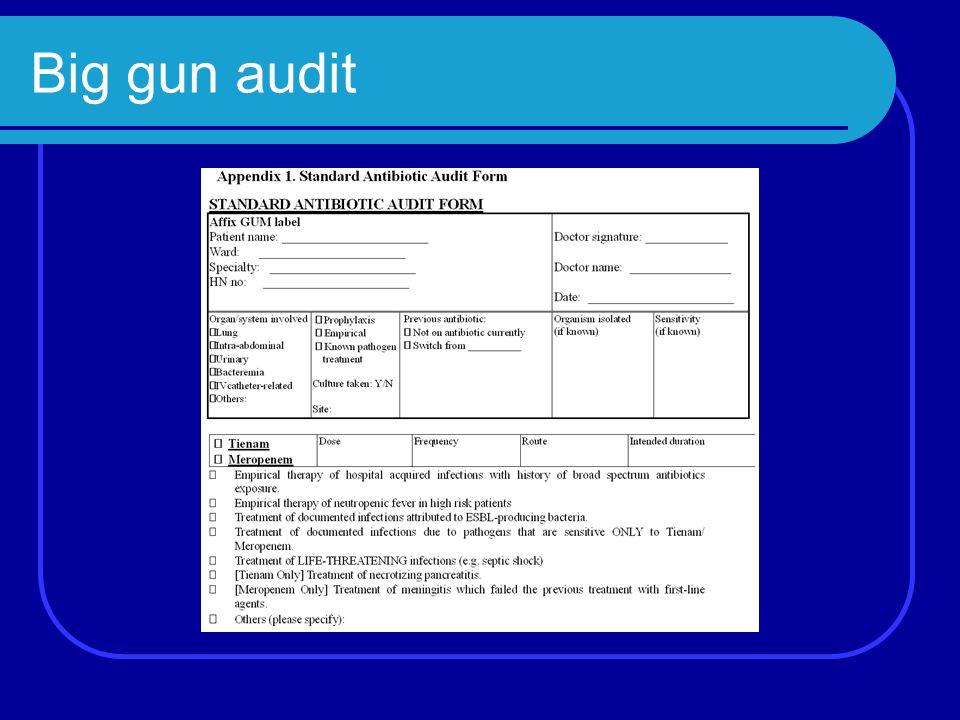 Big gun audit