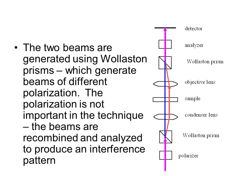 The two beams are generated using Wollaston prisms – which generate beams of different polarization.