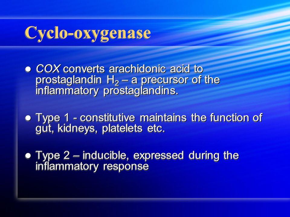 Cyclo-oxygenase COX converts arachidonic acid to prostaglandin H 2 – a precursor of the inflammatory prostaglandins.