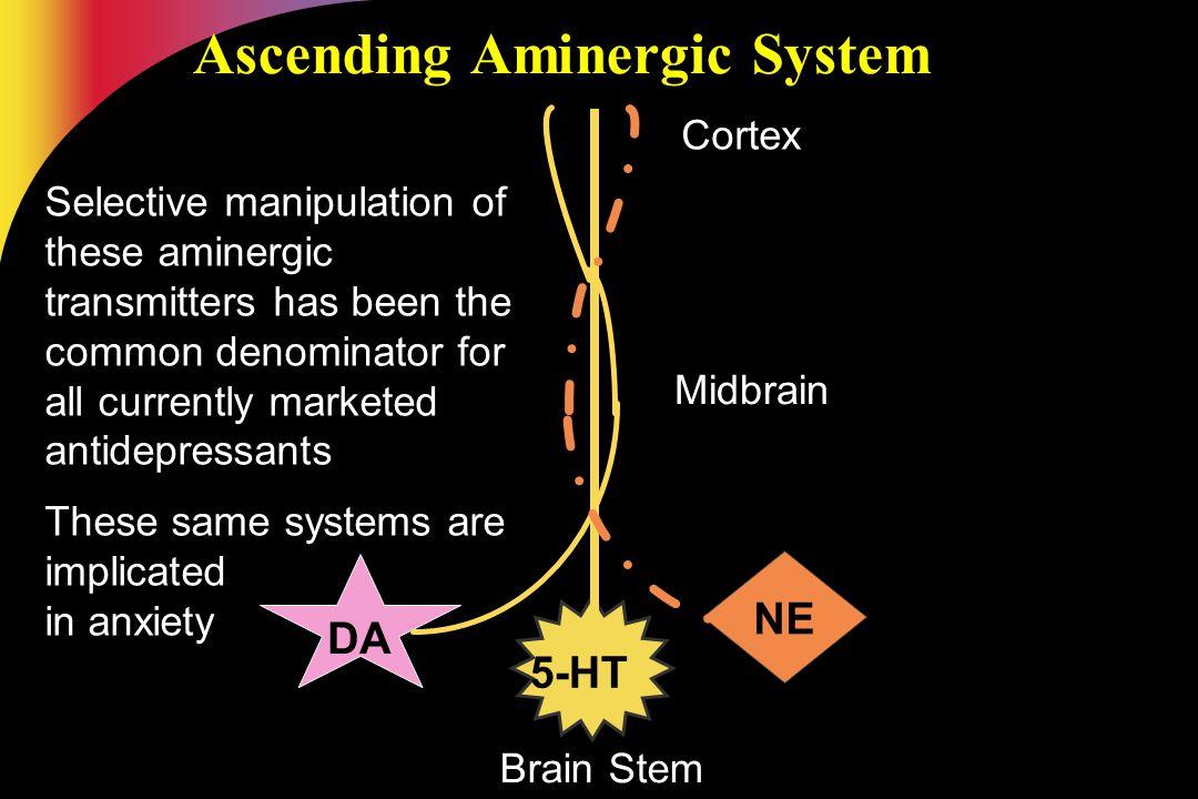 Ascending Aminergic System Brain Stem Midbrain Cortex DA 5-HT NE Selective manipulation of these aminergic transmitters has been the common denominato