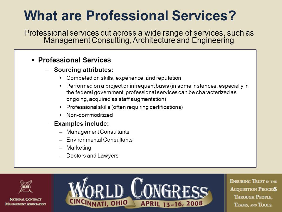 5 What are Professional Services.