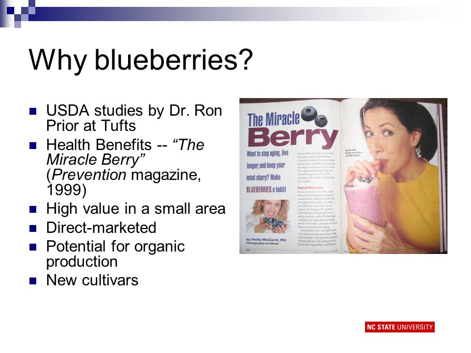 Why blueberries. USDA studies by Dr.