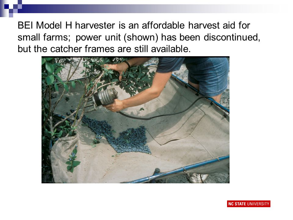 BEI Model H harvester is an affordable harvest aid for small farms; power unit (shown) has been discontinued, but the catcher frames are still available.