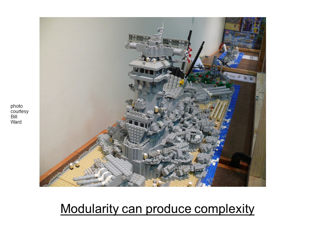 Modularity can produce complexity photo courtesy Bill Ward