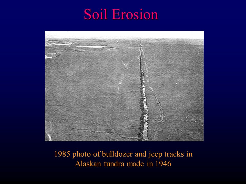 Soil Erosion 1985 photo of bulldozer and jeep tracks in Alaskan tundra made in 1946