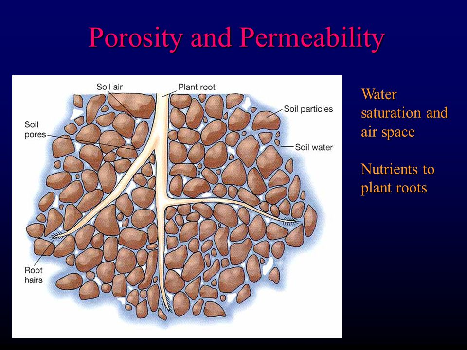 Porosity and Permeability Water saturation and air space Nutrients to plant roots