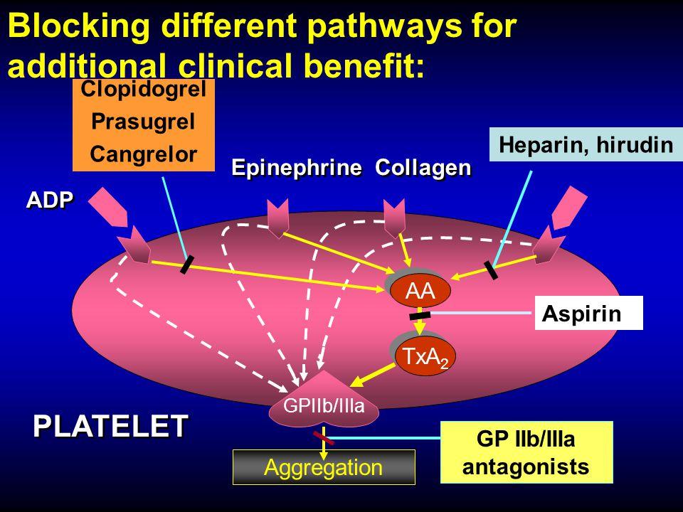 AA TxA 2 GPIIb/IIIa Aggregation Aspirin PLATELET Clopidogrel Prasugrel Cangrelor Heparin, hirudin Blocking different pathways for additional clinical