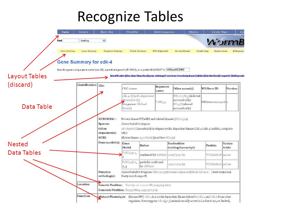 Recognize Tables Data Table Layout Tables (discard) Nested Data Tables