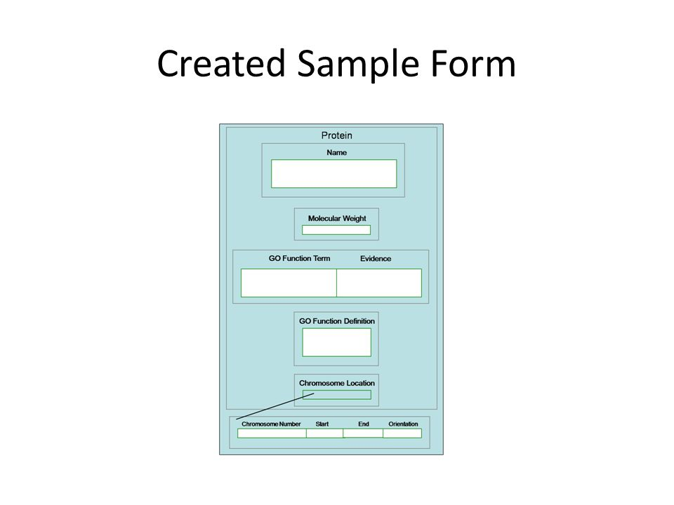 Created Sample Form