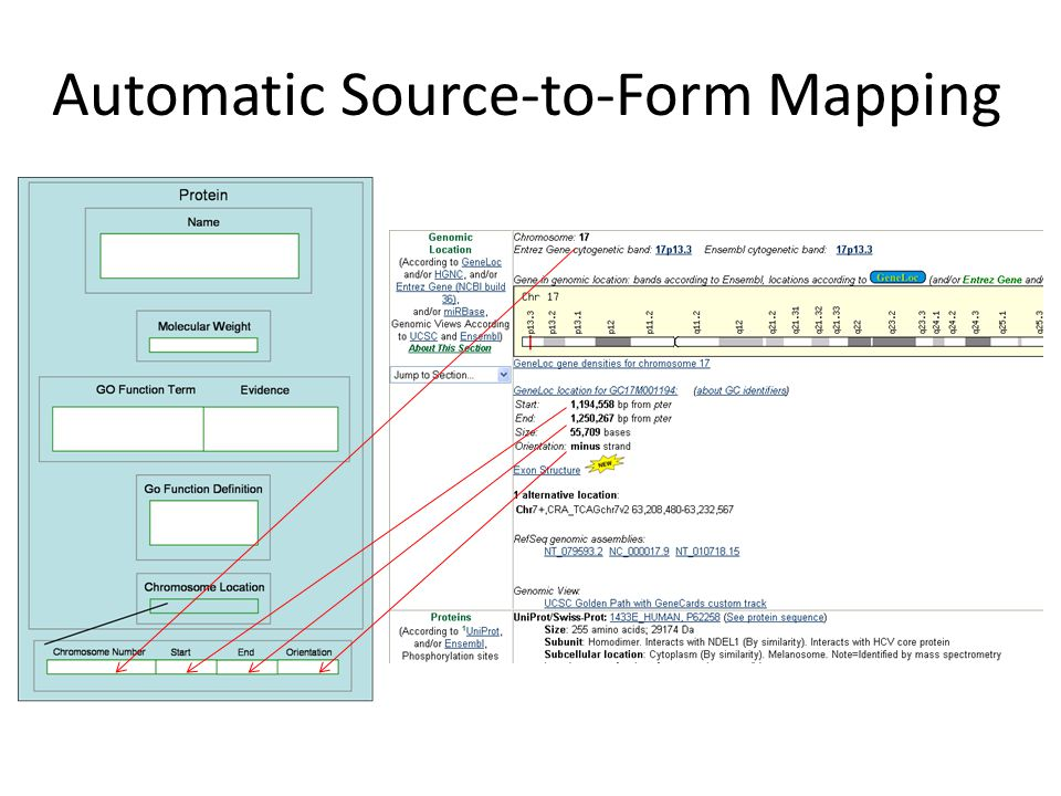 Automatic Source-to-Form Mapping
