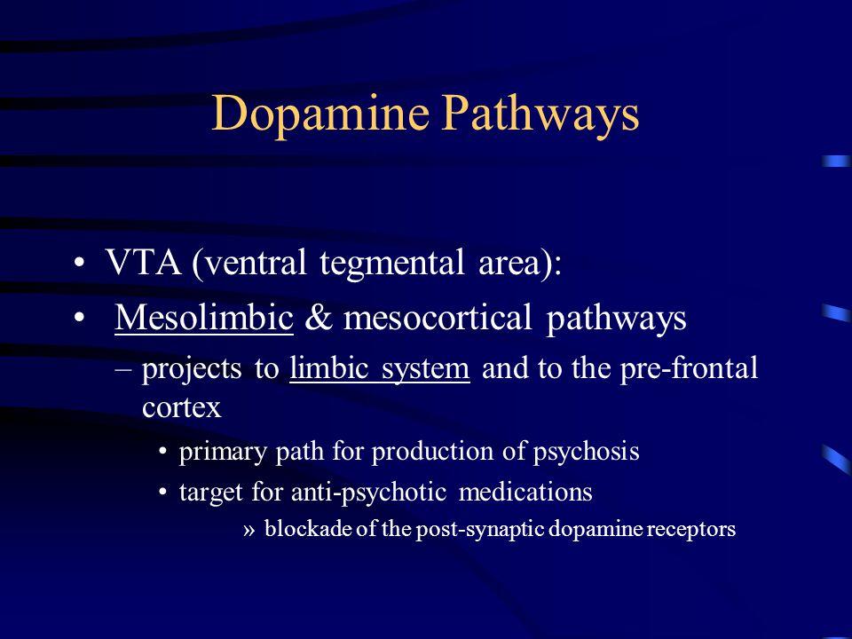 Dopamine Pathways Substantia nigra: Nigro-striatal pathway –projects to the striatum (caudate and putamen) –anti-psychotic medications block the post- synaptic dopamine receptor in the striatum causing motoric side effects (e.g., rigidity and tremors)