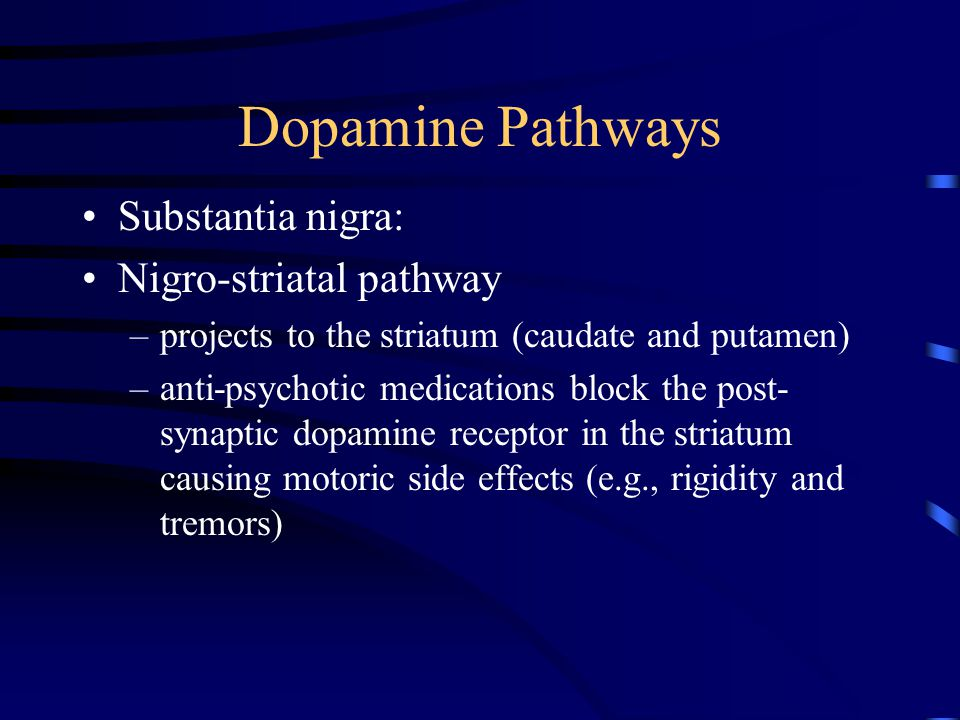 Dopamine Pathways Arcuate and peri-ventricular nuclei: Tubero-infindibular pathway –project to the pituitary inhibits prolactin release some anti-psychotic medications cause increased prolactin release (by blocking dopamine) and cause galactorrhea