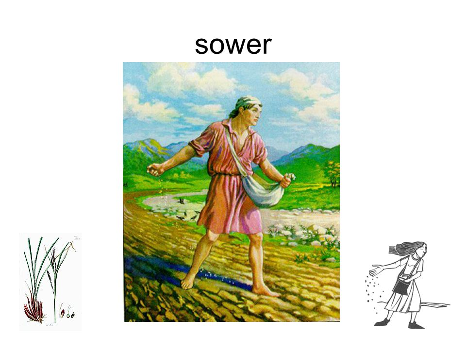 sower