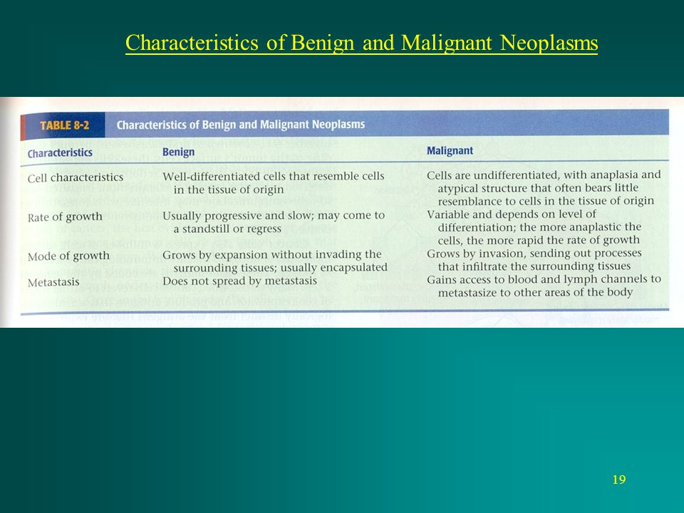 19 Characteristics of Benign and Malignant Neoplasms