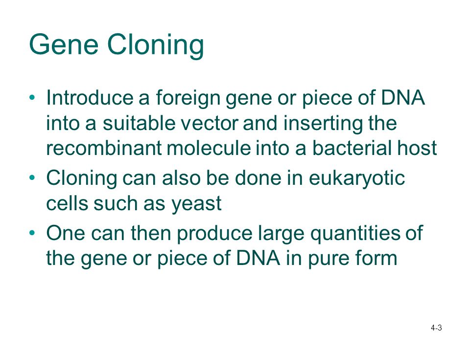 4-3 Gene Cloning Introduce a foreign gene or piece of DNA into a suitable vector and inserting the recombinant molecule into a bacterial host Cloning can also be done in eukaryotic cells such as yeast One can then produce large quantities of the gene or piece of DNA in pure form
