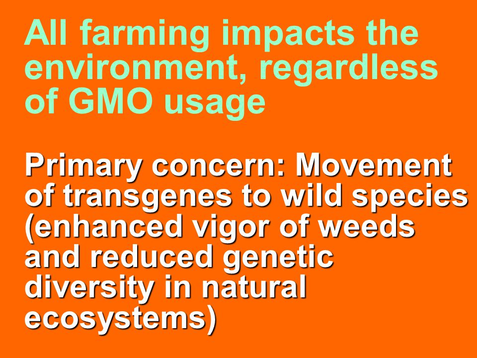 Primary concern: Movement of transgenes to wild species (enhanced vigor of weeds and reduced genetic diversity in natural ecosystems)