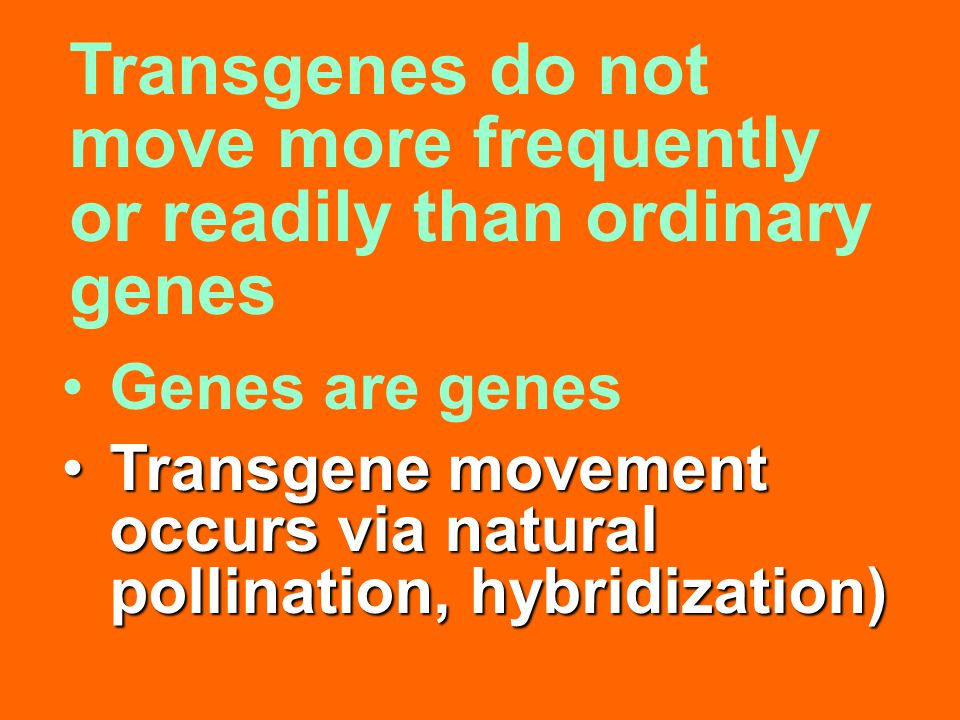 Genes are genes Transgene movement occurs via natural pollination, hybridization)Transgene movement occurs via natural pollination, hybridization) Tra