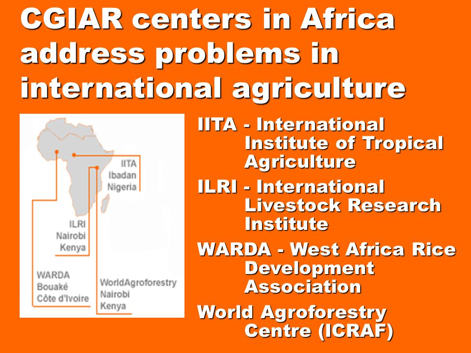 IITA - International Institute of Tropical Agriculture ILRI - International Livestock Research Institute WARDA - West Africa Rice Development Association World Agroforestry Centre (ICRAF) CGIAR centers in Africa address problems in international agriculture