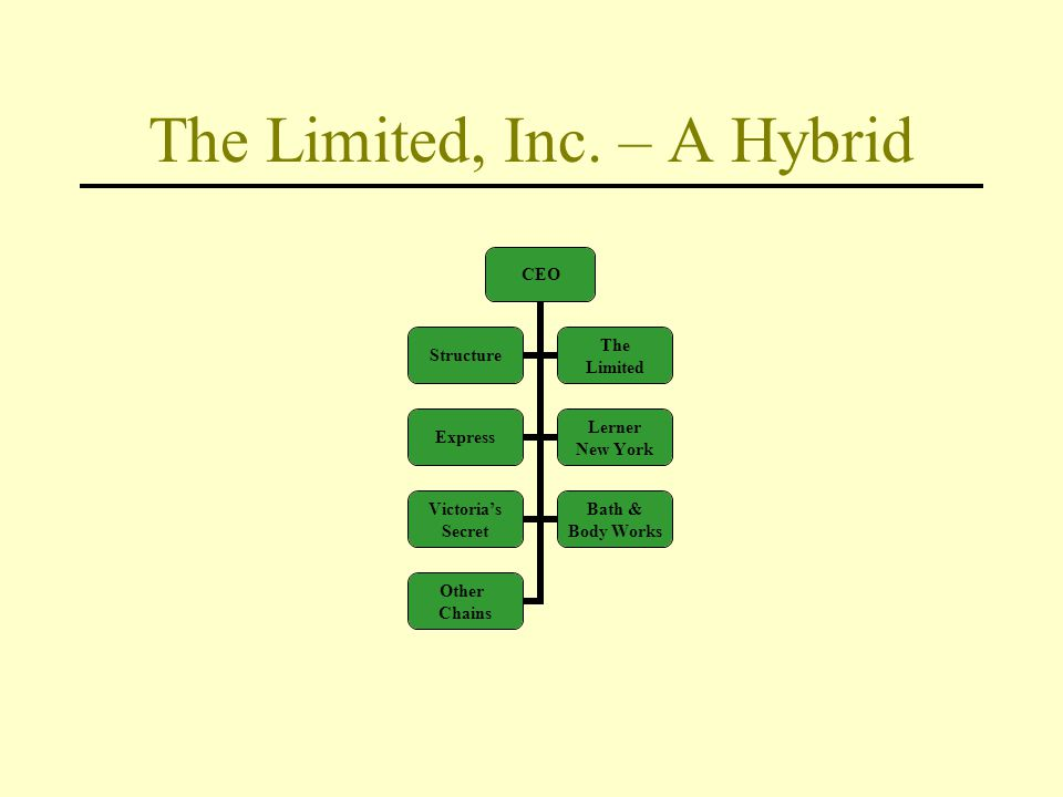The Limited, Inc. – A Hybrid CEO Structure The Limited Express Lerner New York Victoria's Secret Bath & Body Works Other Chains