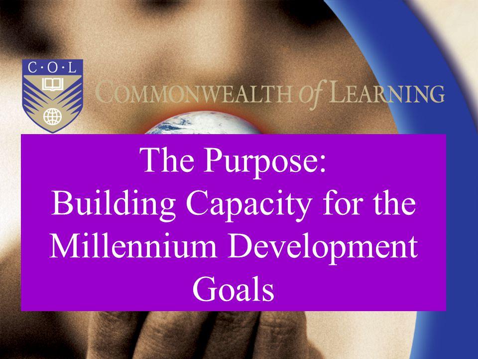 The Purpose: Building Capacity for the Millennium Development Goals