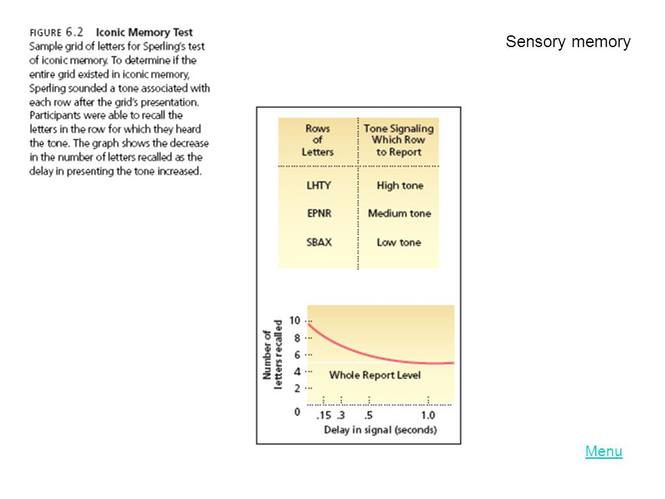 Sensory Memory Echoic memory - the brief memory of something a person has just heard.