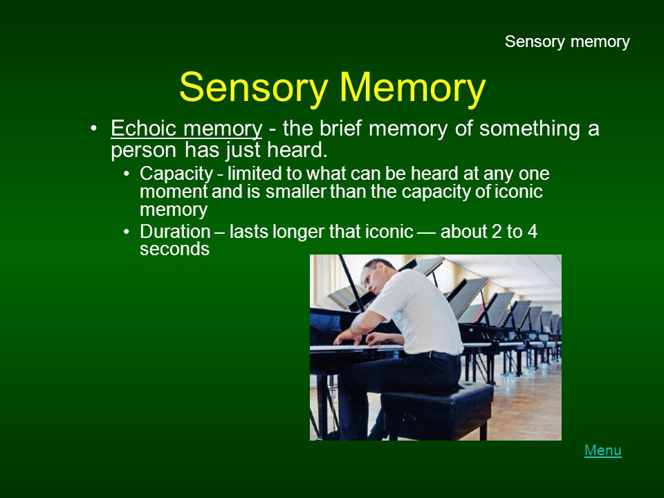 Different types of long-term memory
