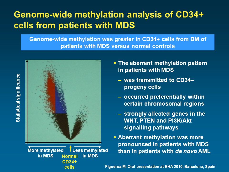 Genome-wide methylation analysis of CD34+ cells from patients with MDS Figueroa M.