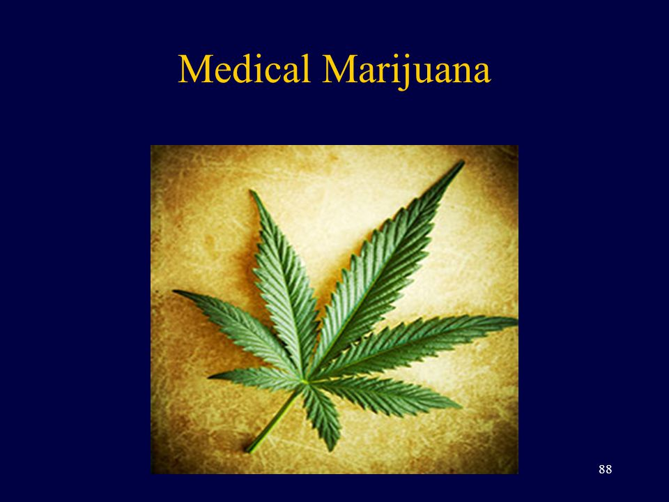 Medical Marijuana 88