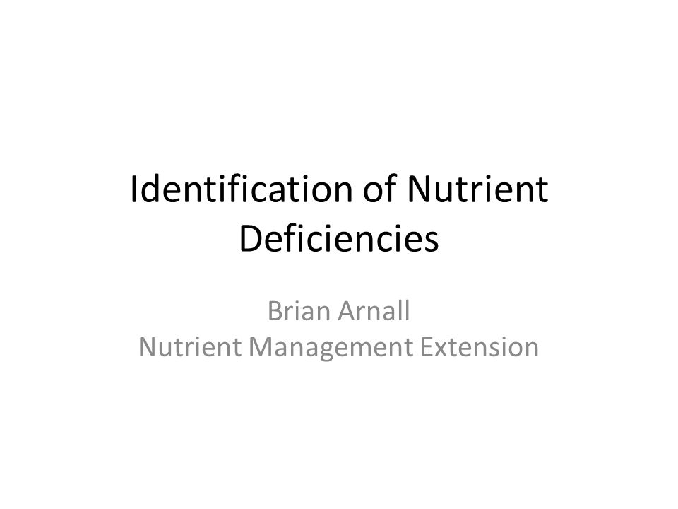 Identification of Nutrient Deficiencies Brian Arnall Nutrient Management Extension