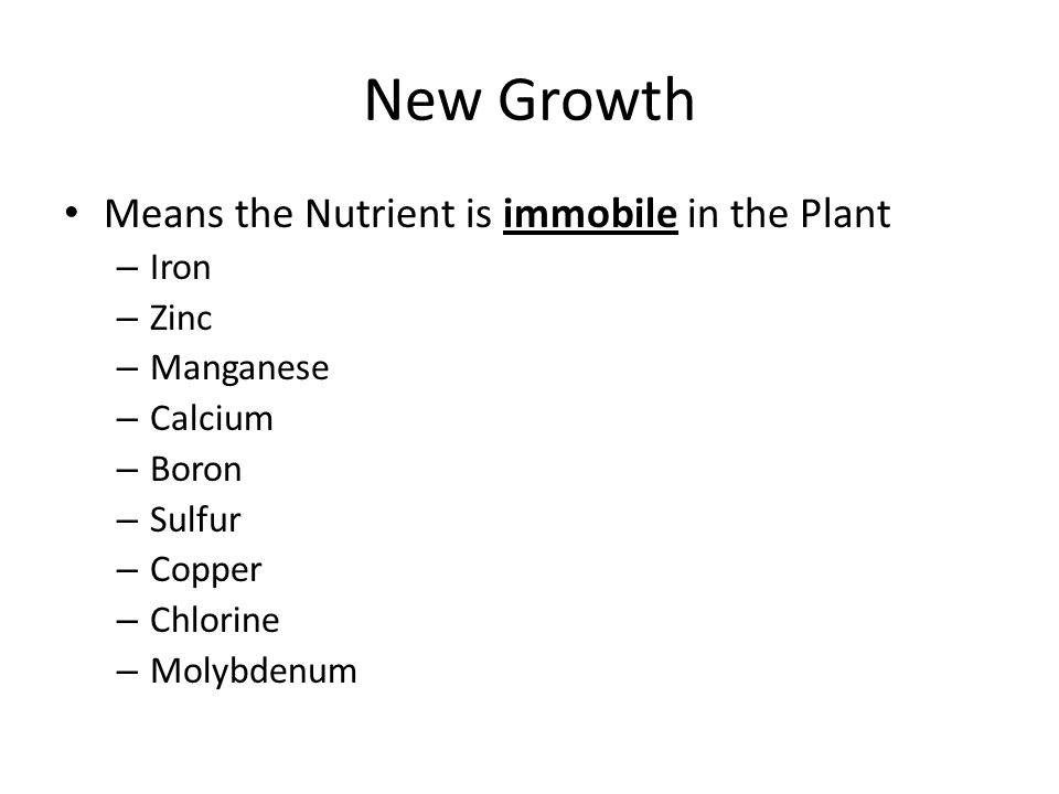 New Growth Means the Nutrient is immobile in the Plant – Iron – Zinc – Manganese – Calcium – Boron – Sulfur – Copper – Chlorine – Molybdenum