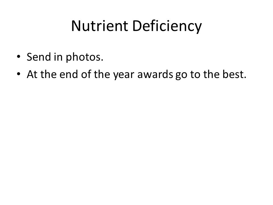 Nutrient Deficiency Send in photos. At the end of the year awards go to the best.