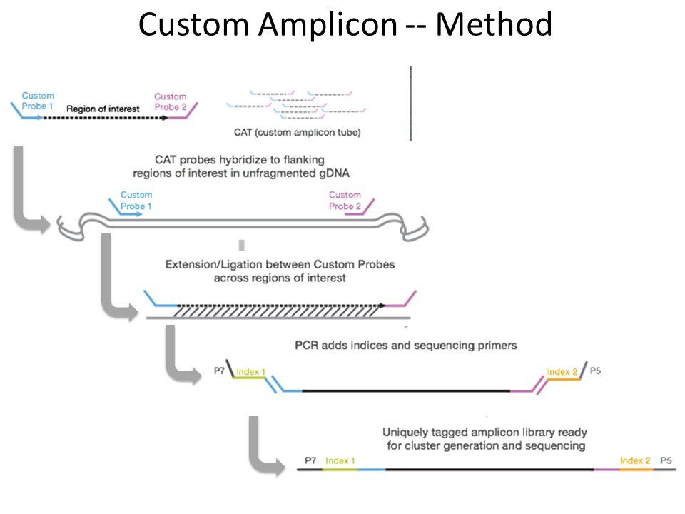 Custom Amplicon -- Method