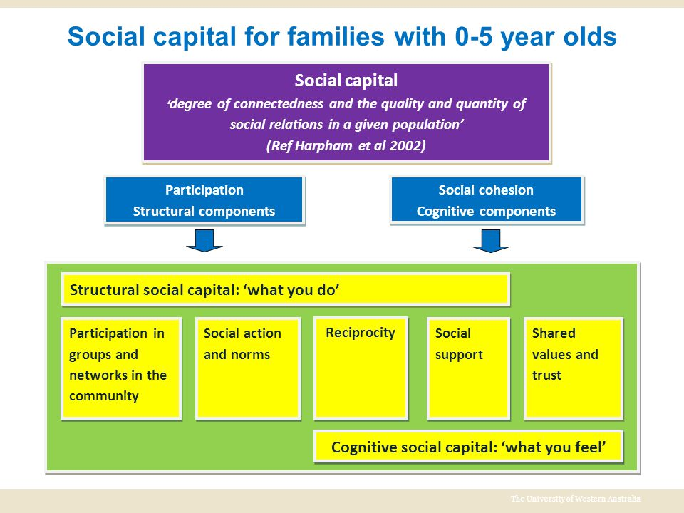 The University of Western Australia Social capital for families with 0-5 year olds Participation Structural components Participation Structural compon