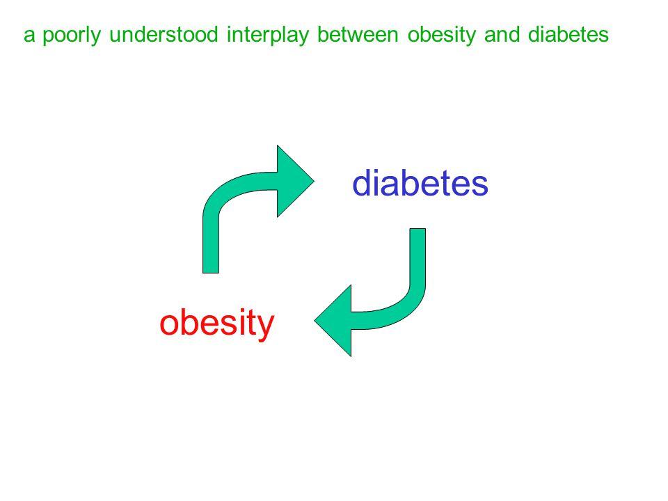 obesity diabetes a poorly understood interplay between obesity and diabetes