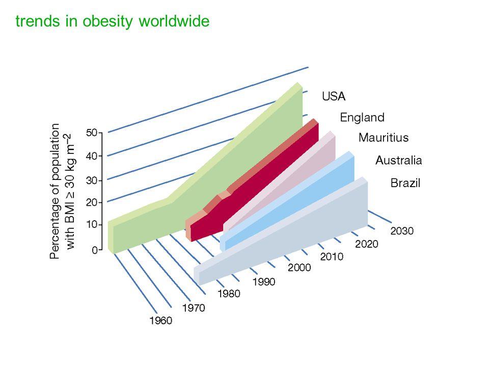 trends in obesity worldwide