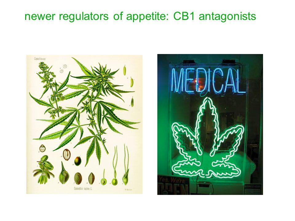 newer regulators of appetite: CB1 antagonists