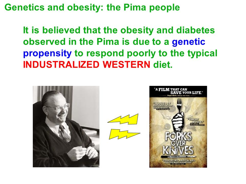It is believed that the obesity and diabetes observed in the Pima is due to a genetic propensity to respond poorly to the typical INDUSTRALIZED WESTERN diet.