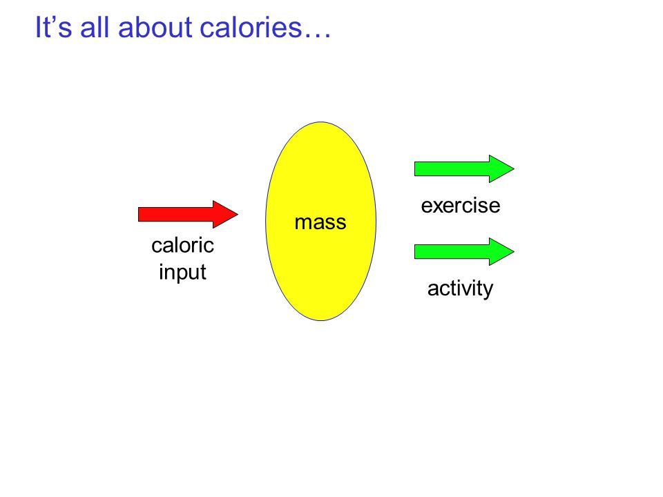 It's all about calories… mass caloric input activity exercise