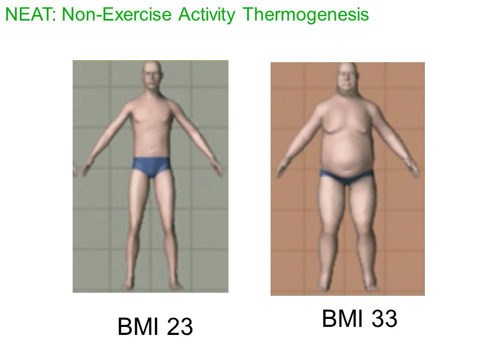 NEAT: Non-Exercise Activity Thermogenesis BMI 23 BMI 33