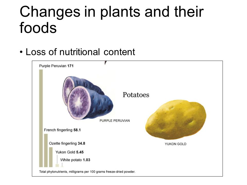 Changes in plants and their foods Loss of nutritional content