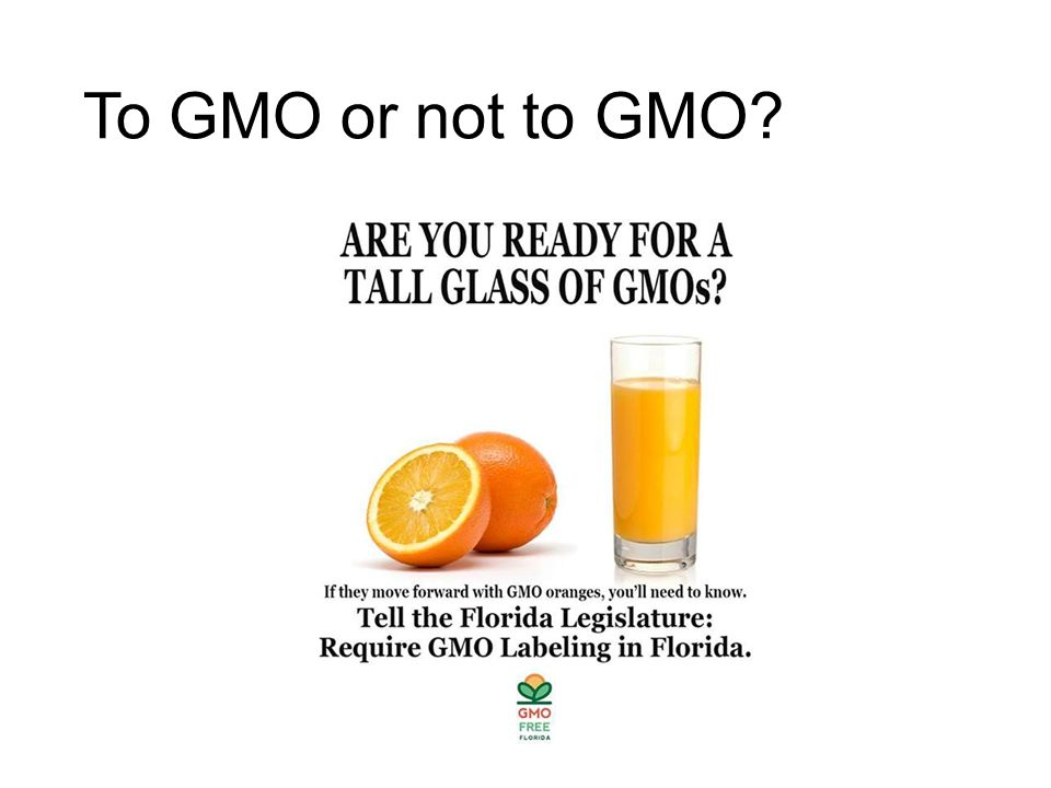 To GMO or not to GMO