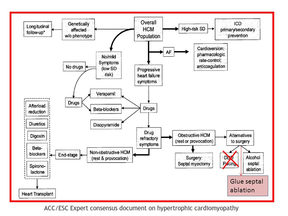Risk Assessment in the PCI Patient Complex Interplay of… Diabetes Mellitus Renal Disease Renal Disease Heart Failure GenderElderly Patient related risks Unprotected LM Unprotected LMSVGBifurcationsCTO Multivessel PCI Procedural/ lesion related risks AMIShockACS Clinicalpresentation