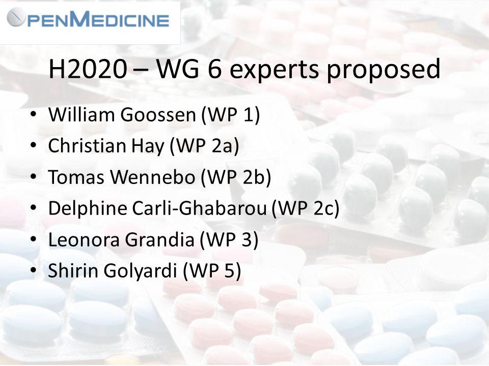 H2020 – WG 6 experts proposed William Goossen (WP 1) Christian Hay (WP 2a) Tomas Wennebo (WP 2b) Delphine Carli-Ghabarou (WP 2c) Leonora Grandia (WP 3) Shirin Golyardi (WP 5)