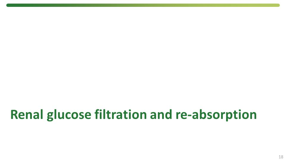 Renal glucose filtration and re-absorption 18
