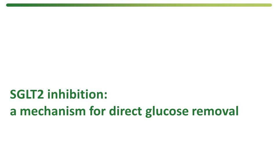 SGLT2 inhibition: a mechanism for direct glucose removal