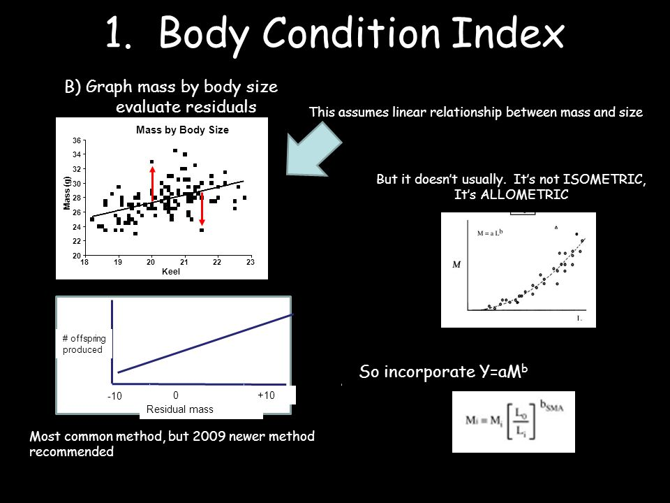 1. Body Condition Index B) Graph mass by body size evaluate residuals Most common method, but 2009 newer method recommended Residual mass 0 -10 +10 #