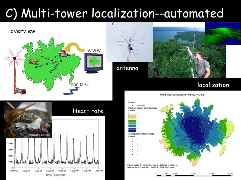 C) Multi-tower localization--automated overview antenna Heart rate localization