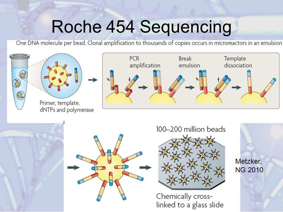 Roche 454 Sequencing Metzker, NG 2010