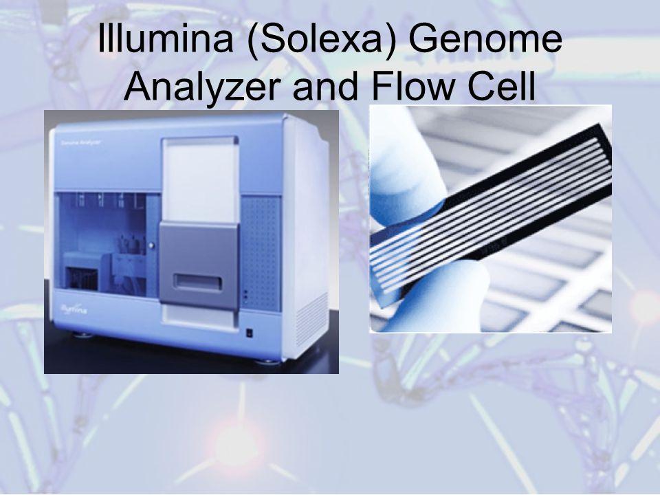 Illumina (Solexa) Genome Analyzer and Flow Cell