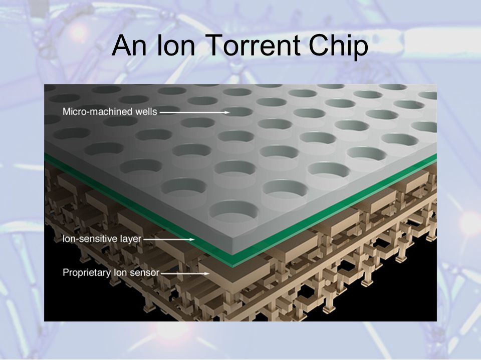 An Ion Torrent Chip